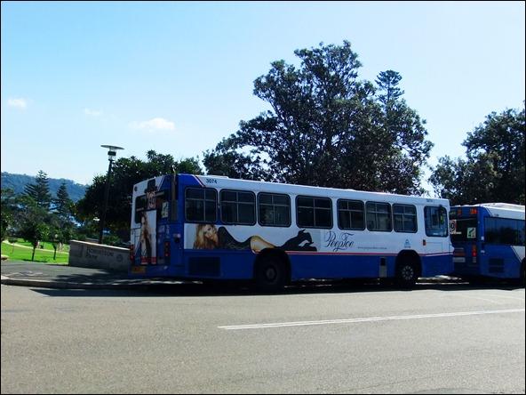 DSCF8839